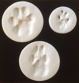 paw-prints-clay